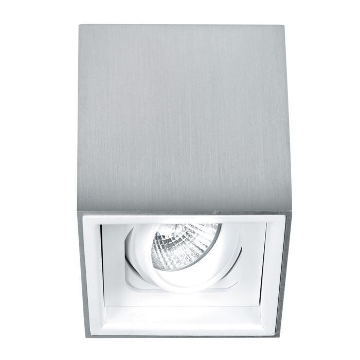 1705.ES50/.. - BETAPLUS, opbouw plafondverlichting - richtbaar - down
