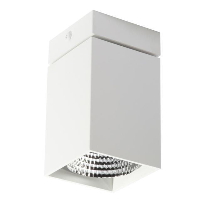 4091.IP20/.. - FIXER XICATO, opbouw plafondverlichting - vast - zonder LED driver