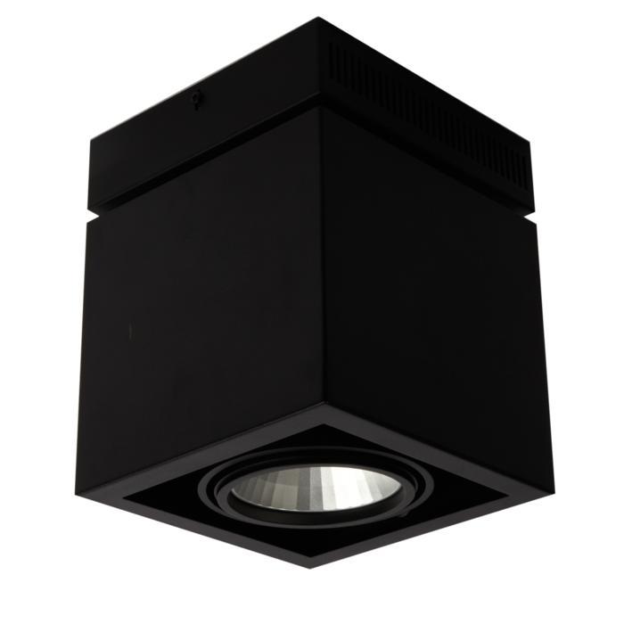 4105.IP20/.. - FIXER XICATO, opbouw plafondverlichting - richtbaar - niet dimbaar - met LED driver