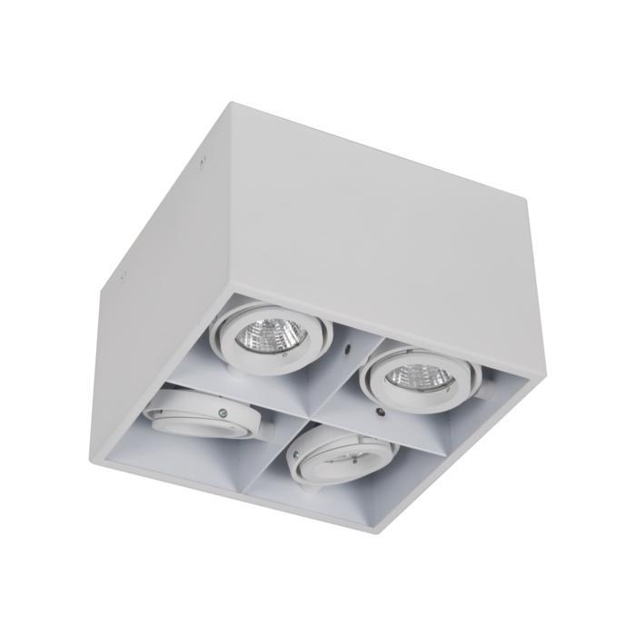 1890DS.ES50/.. - SPINNER X DS, opbouw plafondverlichting - richtbaar - down