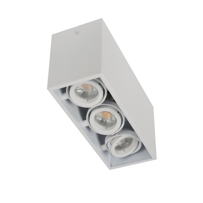 1887DS.ES50/.. - SPINNER X DS, opbouw plafondverlichting - richtbaar - down
