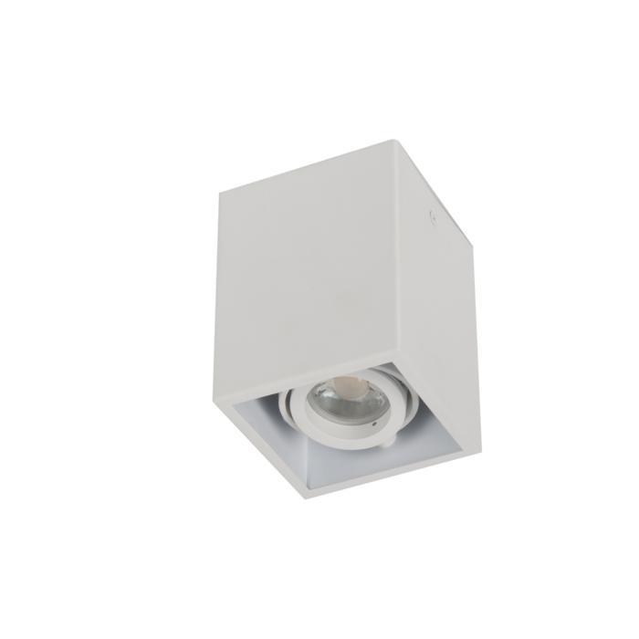 1885DS.ES50/.. - SPINNER X DS, opbouw plafondverlichting - richtbaar - down