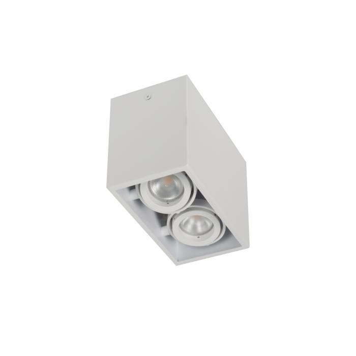 1886DS.ES50/.. - SPINNER X DS, opbouw plafondverlichting - richtbaar - down