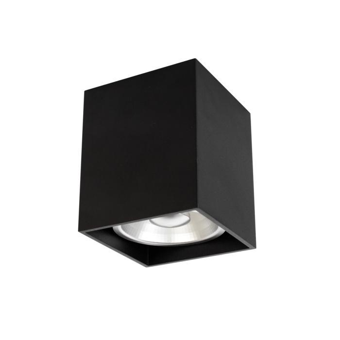 4078/.. - RICHARD ES50, opbouw plafondverlichting - vierkant - vast - down