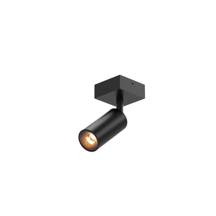 4520/.. - JACOBINE, opbouw plafondverlichting - richtbaar - met basis 025 - zonder LED driver