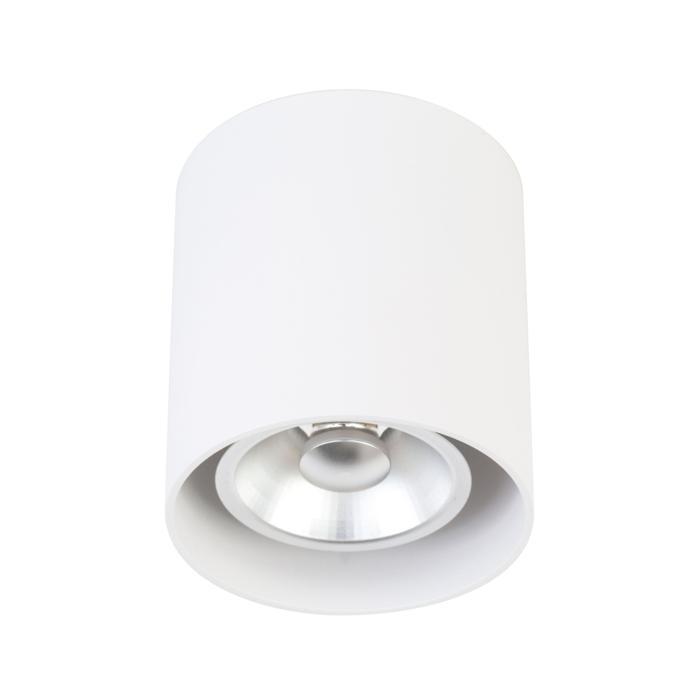 W1612/.. - RICHARD - ALU anodised, opbouw plafondverlichting - rond - vast