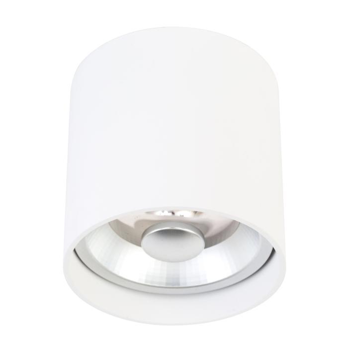 W1617/.. - RICHARD - INOX, opbouw plafondverlichting - rond - vast