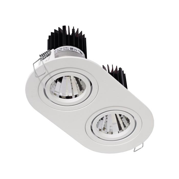 1389.IP20.S1/.. - 2XØ80 LUXOR.IP20, inbouwspot - richtbaar - down - ovaal - met led - zonder LED driver