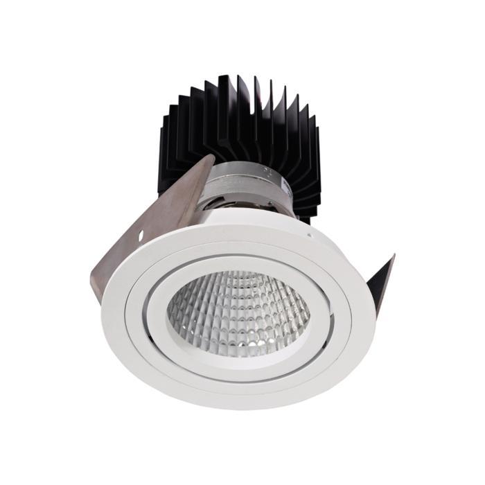 3386.IP20.S2/.. - Ø100 LUXOR.IP20, inbouwspot rond - richtbaar - down - met led - zonder LED driver