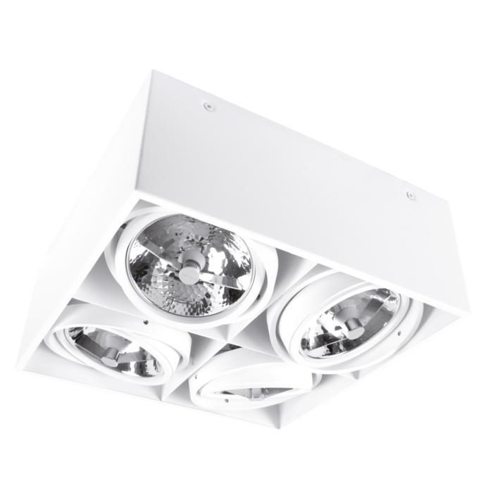 1868/.. - SPINNER X, opbouw plafondverlichting - richtbaar - down - met transfo