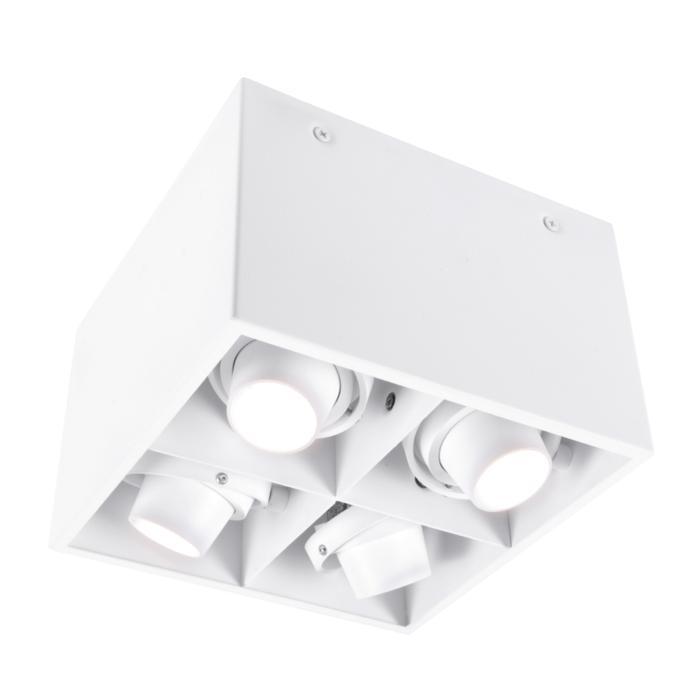 1890.ES50/.. - SPINNER X FORUM, opbouw plafondverlichting - richtbaar - down